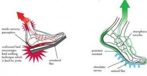 forefoot vs rearfoot