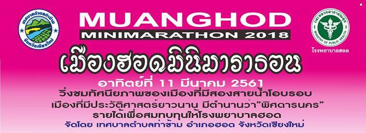 เมืองฮอดมินิมาราธอน ครั้งที่ 1
